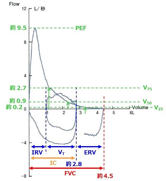 フローボリューム曲線の見方