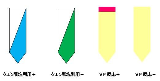 VP・クエン酸の見方