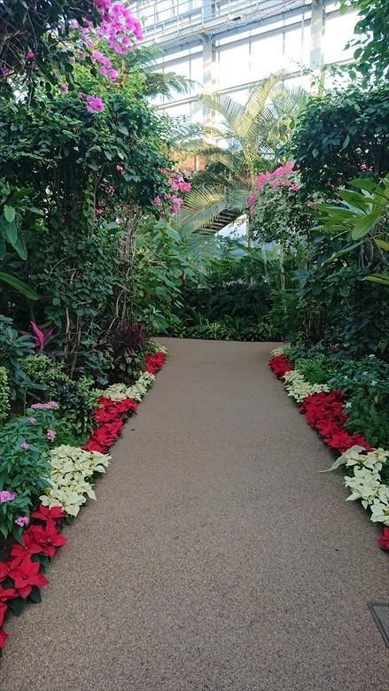 植物園15