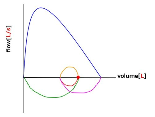 フローボリューム曲線健常人