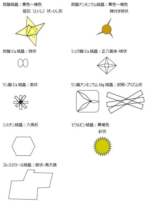 尿沈渣結晶形状