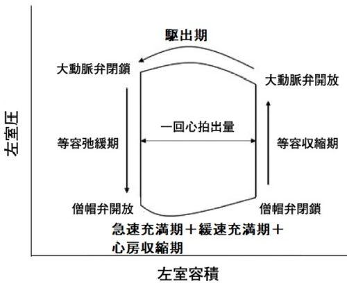 圧容積曲線
