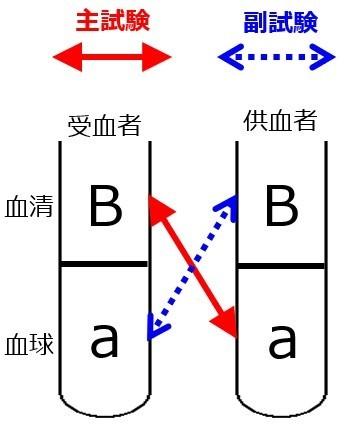 交差適合試験A-A