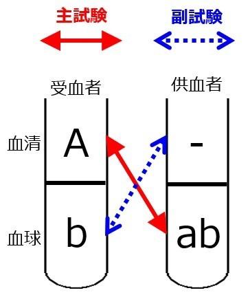 交差適合試験B-AB