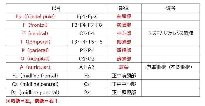 10-20電極法名称