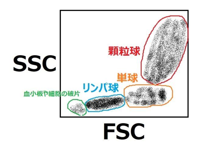 FSCとSSC